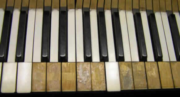 エボニーとアイボリーのピアノ・キー