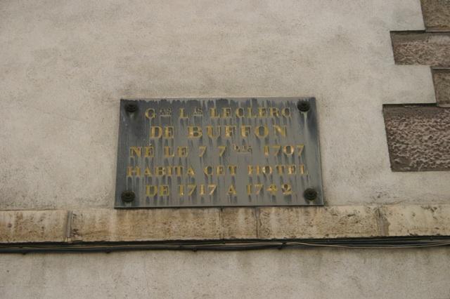 Buffon's plaque