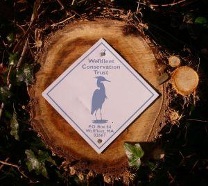 Wellfleet Conservation Trust logo