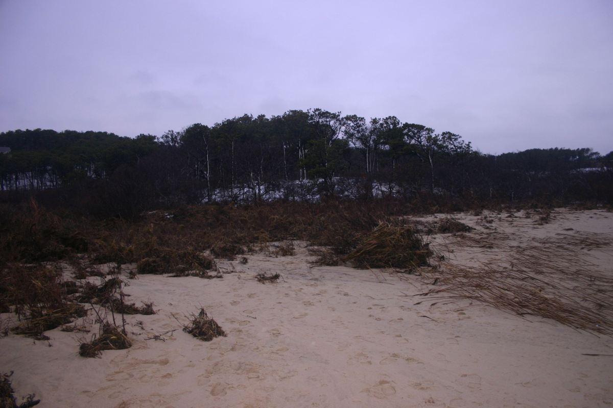 Pamet River banks
