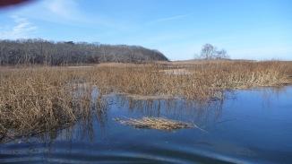 Namskaket Marsh