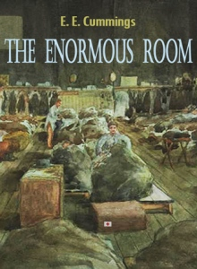 12291159-the-enormous-room-now-available-on-web-bookscom