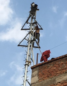 Installing the cell antenna