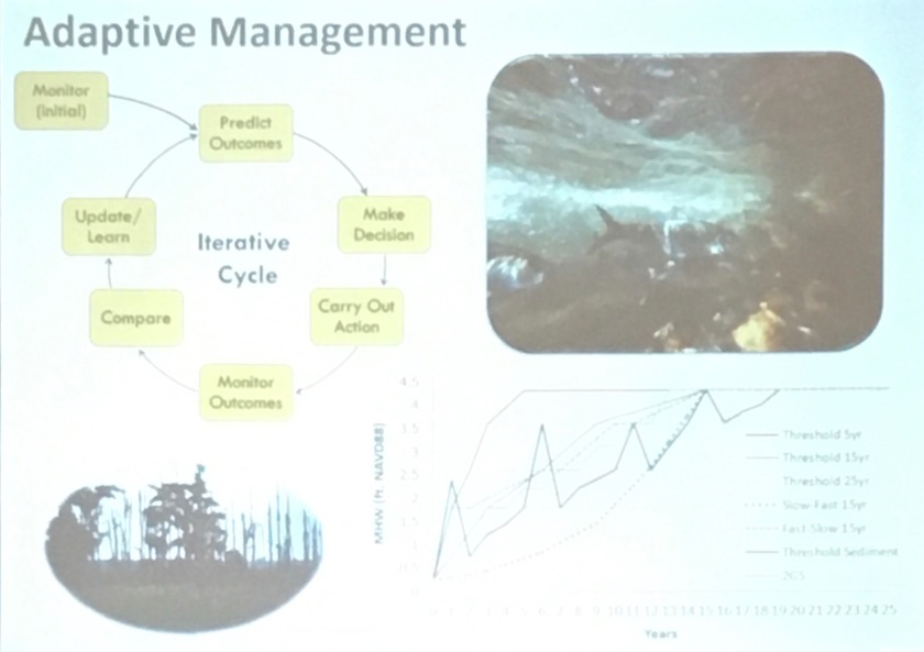 Maps of process and monitoring